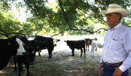 Japan Easing Decade-Long Ban on American Beef Imports